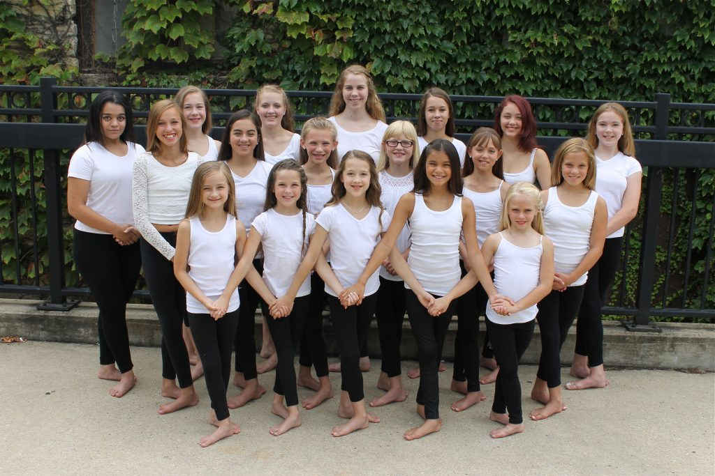A Step Above Dance Academy 2015 - 2016 Competitive Company